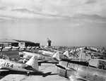 North American SNJ-4 Texan advanced trainers lined up at the Naval Air Station at Corpus Christi, Texas, United States, July 1942.