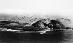 Aerial view of Iwo Jima and Mt Suribachi looking across the southern point and the landing beeches to the supply ship staging area, 24 Feb 1945, five days after the initial landings.