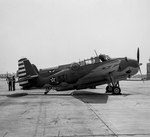 A TBF Avenger of Torpedo Squadron VT-8 at Norfolk, Virginia, United States, Mar 1942. Note the red and white rudder stripes that were authorized for only four months.