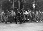 Prisoners from Dachau on a forced march along Nördliche Münchner Street in Grünwald, Germany toward camps deeper in Germany as Allied forces closed in, 29 Apr 1945