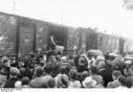 Ethnic Germans leaving Bessarabia, which had recently been transferred from Bessarabia to the Soviet Union, Jun-Jul 1940