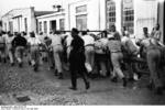 Prisoners moving a heavy wagon, Dachau Concentration Camp, Germany, 24 May 1933