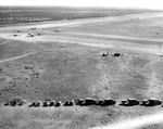 With trucks lined up along the airstrip, CG-4A gliders land in groups of three at a glider training airstrip in Texas, 1943.