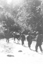 Members of US 5332nd Brigade (Provisional) marching through a stream, Burma, 17 Jan 1945