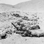 Sikh troops training with Bren guns and 2-inch mortar, western Egypt, 6 Aug 1941