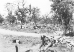 Landscape outside of Myitkyina, Burma, 17 Dec 1944, photo 1 of 2; photo taken by photographer attached to US 5332nd Brigade (Provisional)