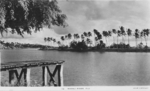 Postcard featuring view of Navau River, Fiji, 1940s