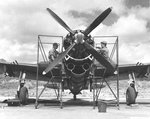 P-47 Thunderbolt aircraft of the 318th Fighter Group receiving maintenance before an inspection at Bellows Field, Oahu, US Territory of Hawaii, 15 May 1944.