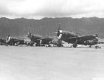 P-47 Thunderbolt aircraft of the 318th Fighter Group lined up for an inspection at Bellows Field, Oahu, US Territory of Hawaii, 15 May 1944. Photo 8 of 8.