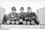 SdKfz 165 crew, Soviet Union, Jan-Feb 1944