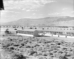 View of the camouflage netting sheds at the Manzanar Relocation Center for deported Japanese-Americans, 1 Jul 1942. Many of the camp's internees worked in these sheds making Camouflage netting by hand for the Army.