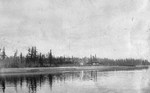 Puget Sound's Sinclair Inlet before development, 1892 at what is now Bremerton, Washington, United States.