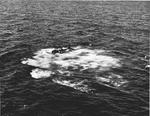 US Navy pilot Lt (jg) C. Clifton Francom unsuccessfully testing TBM Avenger torpedo bomber with experimental wing mounted radome aboard Ticonderoga, 4 Jul 1944, photo 5 of 5