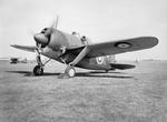 Buffalo Mark I fighter preparing for flight, Aug 1940