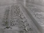 CG-4A and Horsa gliders at an English airfield preparing for the Normandy invasion, May 1944; note the application of invasion stripes still in-progress