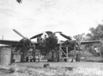 Ground crew members of the USAAF 459th Fighter Squadron working on a P-38 Lightning aircraft, Chittagong, India, Jan 1945