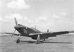 A-36 Mustang ground attack aircraft, which was based on the P-51 Mustang fighter, date unknown