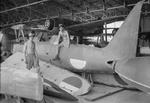 Corporal Ralph Hayden and Leading Aircraftman Harry Pearce of No. 80 Squadron RAF working on F1M (foreground) and N1K (background) aircraft, Surabaya, Java, Dutch East Indies, Jan 1946