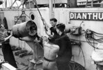 Crew of HMS Dianthus loading a Mk VII depth charge into a Mk IV depth charge thrower, 14 Aug 1942