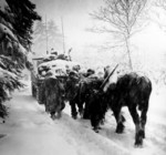 Troops of US 82nd Airborne Division marching behind M4 Sherman tank in a snowstorm toward German occupied town of Herresbach, Belgium, 28 Jan 1945