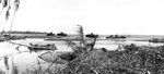 Destroyed tanks of Japanese 1st Independent Tank Company at the mouth of the Matanikau River, Guadalcanal, Solomon Islands, Oct 1942, photo 1 of 2