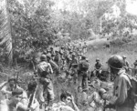 US Marines resting in the field on Guadalcanal, Solomon Islands, circa Aug-Dec 1942; note Springfield M1903 rifles and a Browning Automatic Rifle gunner on far right