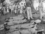 Dead American soldiers on the Bataan death march, 1942