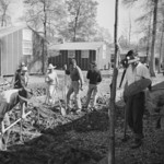 Men digging drainage ditches by the mess hall of Block 7 of Jerome War Relocation Center, Arkansas, United States, 16 Nov 1942, photo 1 of 2