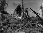 Men of US 7th Division waiting outside a Japanese blockhouse on Kwajalein while a flamethrower did its work, 4 Feb 1944