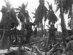 US Marines advancing on Eniwetok, Marshall Islands, 23 Feb 1944; note bayonets fixed on rifles