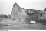 Destroyed buildings at Nemmersdorf, East Prussia, Germany, late Oct 1944, photo 4 of 6