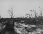 Jeeps driving in muddy terrain, Cape Gloucester, New Britain, 1943