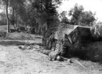 A German mechanized column devastated by British aircraft, near Mortain, France, 7 Aug 1944; note dead German soldier near wrecked SdKfz. 251 halftrack vehicle