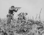 A Marine of the US 1st Marines Division pointed his Thompson submachine gun at a Japanese sniper, Okinawa, Japan, Apr-Jun 1945