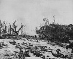 Men of the US 1st Marine Division fighting just beyond White Beach, Peleliu, 15 Sep 1944, photo 1 of 2