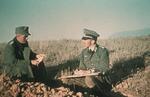 A German Army company commander and a platoon commander in discussion, Stalingrad, Russia, 21 Jun 1942