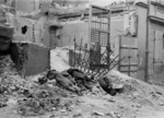 Executed Jews in the Warsaw Ghetto, Poland, Apr-May 1943