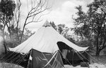 Tent for USAAF 3rd Bomb Group personnel, Charters Towers, Australia, early 1942