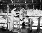 Private Robert Boucher, Sergeant John Paulovitch, and Corporal Roland Holmberg processing mission photographs brought back from B-25 bombers, Dobodura Airfield, Australian Papua, mid-1943