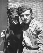 US Marine Private Alexander Boccardo and a Doberman Pincher war dog, Camp Lejeune, Jacksonville, North Carolina, United States, circa 1943