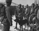 Japanese soldiers with war dog in northern China, 1937