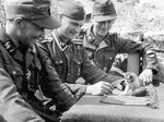 Men of 20th Estonian SS Volunteer Division playing with a kitten, 1944-1945; note Model 39 Eihandgranate nearby