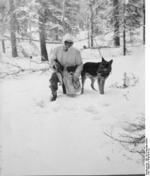 German Waffen-SS soldier training a dog in snow, Norway, 1940-1944