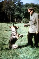 Adolf Hitler and his dog Blondi, date unknown