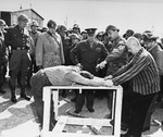 Survivors of Ohrdruf Concentration Camp demonstrating a method of torture they were subjected, Thuringia, Germany, 12 Apr 1945; Alois Liethe (mustached) was interpretor to Eisenhower