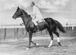 George Patton riding the steeplechase horse Wooltex, 1914