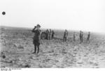 Colonel General Erwin Rommel observing the field with binoculars, North Africa, 1942, photo 2 of 2