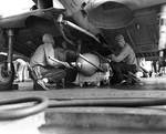 Crew aboard Enterprise loaded a 500 lb demolition bomb on a SBD scout bomber for strike on Guadalcanal and Tulagi, 7 Aug 1942
