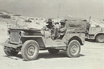 Willys MB Jeep in the service of Australian 2/48th infantry battalion in Egypt