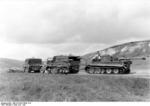 German SdKfz. 9 halftrack vehicle towing a Panzer VI Tiger I heavy tank in preparation for Operation Zitadelle, near Kursk, Russia, Jun 1943